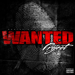Wanted Project (2015)