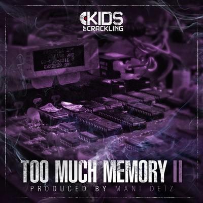 Mani Deiz - Too Much Memory II (2015)