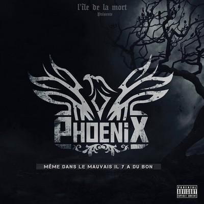 Phoenix - Meme Dans Le Mauvais Il Y A Du Bon (2016)