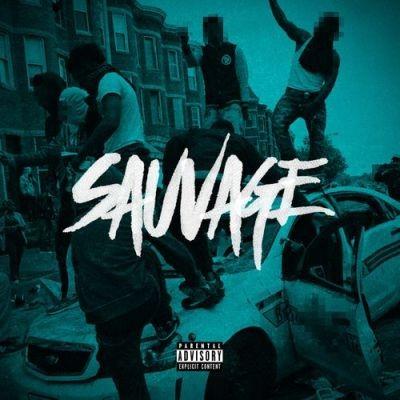 Various Artists - Sauvage (2016)
