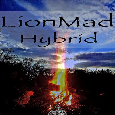 LionMad - Hybrid (2017)