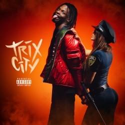 Diddi Trix - Trix City (2019)