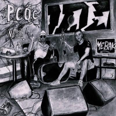 Ness & Mebak - P.C.Q.C (2020)
