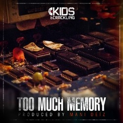 Mani Deiz - Too Much Memory (2012)