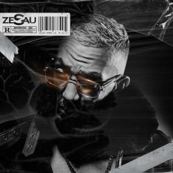 Zesau - D.E.L (2020)